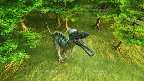 恐竜の写真素材 [FYI00086906]