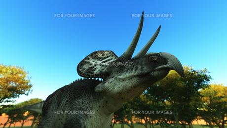 恐竜の写真素材 [FYI00086909]