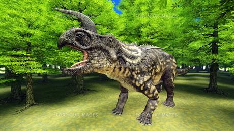 恐竜の写真素材 [FYI00086911]
