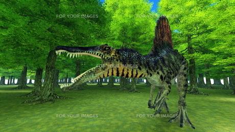 恐竜の写真素材 [FYI00086913]