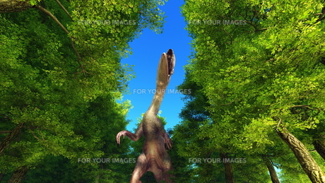 恐竜の写真素材 [FYI00086915]