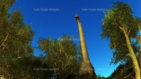 恐竜の写真素材 [FYI00086921]