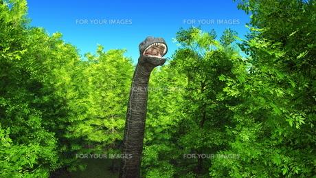 恐竜の写真素材 [FYI00086931]