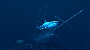 サメの素材 [FYI00087012]