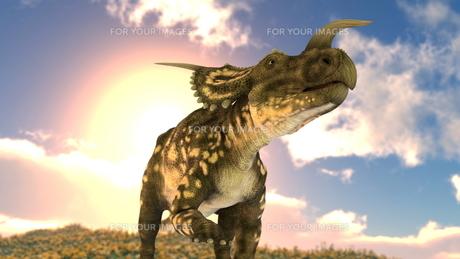 恐竜の写真素材 [FYI00087230]