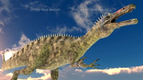 恐竜の写真素材 [FYI00087234]