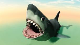 サメの素材 [FYI00087433]