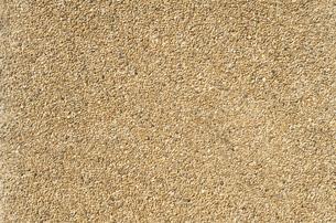 砂壁の写真素材 [FYI00088438]