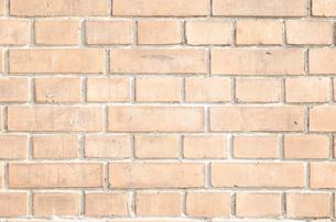 レンガ壁の写真素材 [FYI00088447]