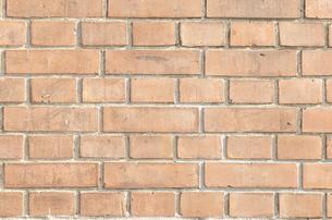レンガ壁の写真素材 [FYI00088462]