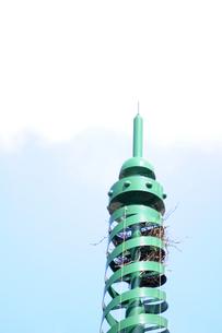 塔の先端 鳥の巣の写真素材 [FYI00088532]