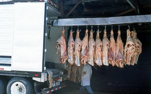 肉問屋の積みおろしの写真素材 [FYI00088692]