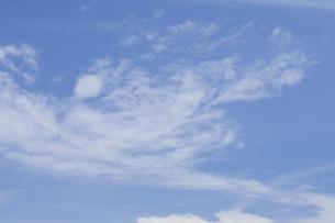 青空と夏の雲の写真素材 [FYI00088732]