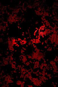 赤と黒(携帯待ち受け)の写真素材 [FYI00088975]