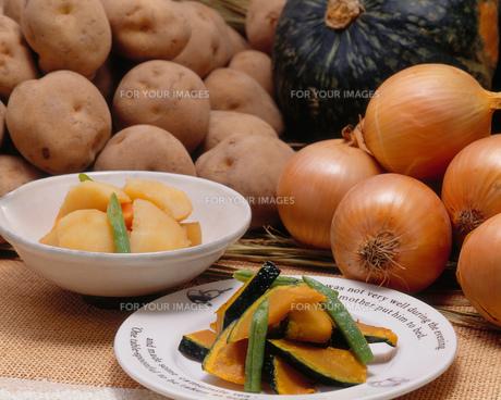 大地の恵み(野菜セット)の写真素材 [FYI00089014]