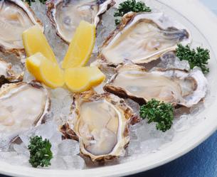 牡蠣(生かき)アップの写真素材 [FYI00089057]