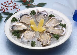 生牡蠣(かき)の写真素材 [FYI00089072]