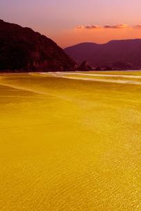 黄金海岸の写真素材 [FYI00089136]
