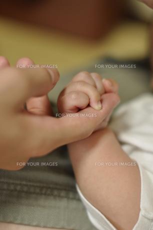 赤ちゃんと握手の写真素材 [FYI00089377]