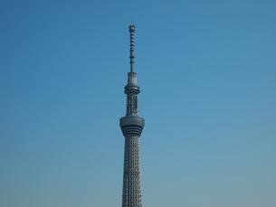 東京スカイツリーの写真素材 [FYI00089430]