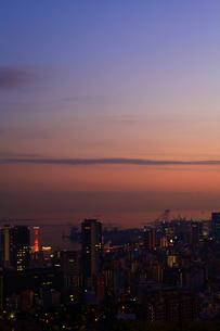 夕日に染まる神戸市内/六甲山から(縦)の写真素材 [FYI00089669]
