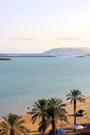 イスラエル/死海022の素材 [FYI00090135]