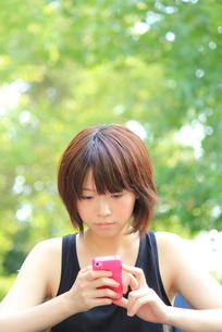 Princess MAIKO Benicio/携帯電話/新緑の写真素材 [FYI00090399]