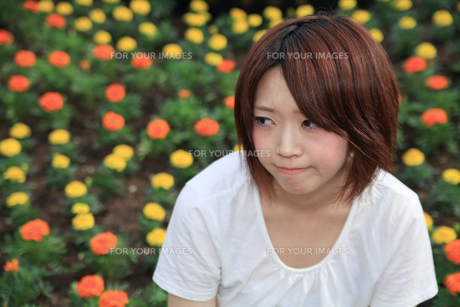 Princess MAIKO Benicio/花畑シリーズの写真素材 [FYI00090419]