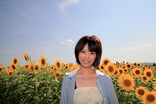 Princess MAIKO Benicio/向日葵畑シリーズの写真素材 [FYI00090486]