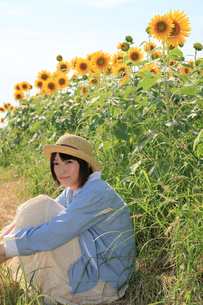 Princess MAIKO Benicio/向日葵畑シリーズの写真素材 [FYI00090488]