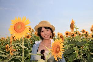 Princess MAIKO Benicio/向日葵畑シリーズの写真素材 [FYI00090495]