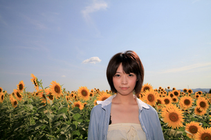 Princess MAIKO Benicio/向日葵畑シリーズの写真素材 [FYI00090511]