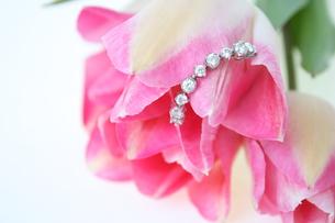 宝石と花びらの写真素材 [FYI00090701]