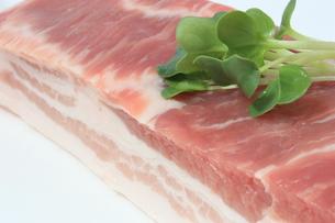 豚ばら肉ブロックの写真素材 [FYI00090707]