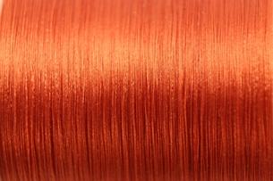 赤毛の写真素材 [FYI00090778]