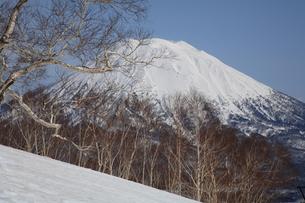 冬の羊蹄山の写真素材 [FYI00090845]