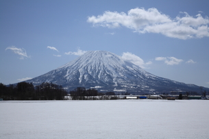 冬の羊蹄山の写真素材 [FYI00090869]