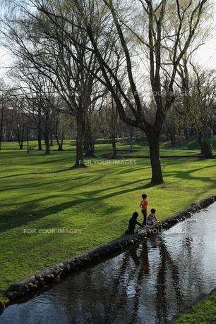 緑地夕景の写真素材 [FYI00090944]