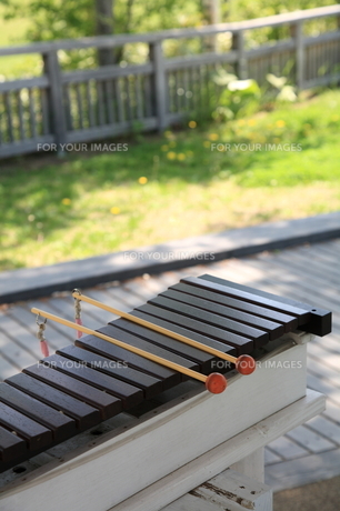 木琴の写真素材 [FYI00091211]