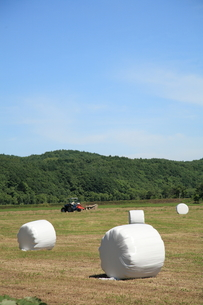 白い牧草ロールの写真素材 [FYI00091299]