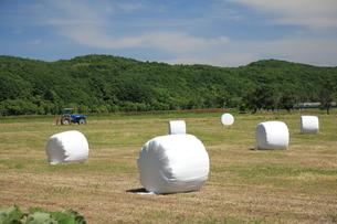 白い牧草ロールの写真素材 [FYI00091306]