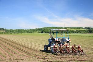 夏の農場の写真素材 [FYI00091318]