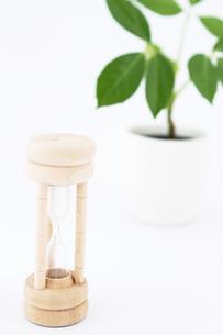 砂時計と植物1の写真素材 [FYI00091494]