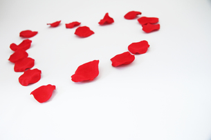 ハート型に置かれた花びら3の写真素材 [FYI00091502]
