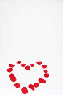 ハート型に置かれた花びら2の写真素材 [FYI00091503]
