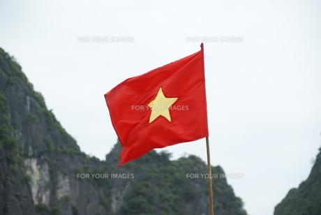 ベトナムの国旗の写真素材 [FYI00091543]