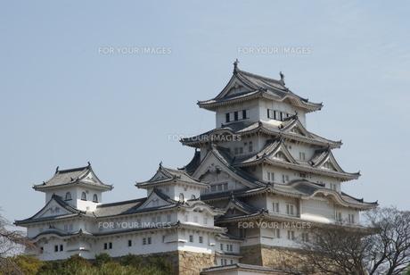 姫路城の写真素材 [FYI00091617]