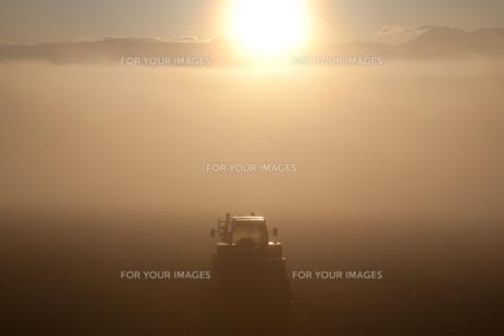 朝霧の大地に輝くトラクターの素材 [FYI00092167]