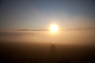 朝焼けの大地に輝くトラクターの写真素材 [FYI00092215]