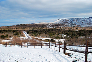 雪の三原山山道の写真素材 [FYI00092366]